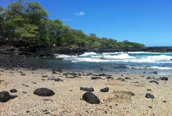 Maui Stamper La Perouse Bay