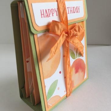 Maui Stamper CASE Pootles Tea Bag Folder Holder Fresh Fruit