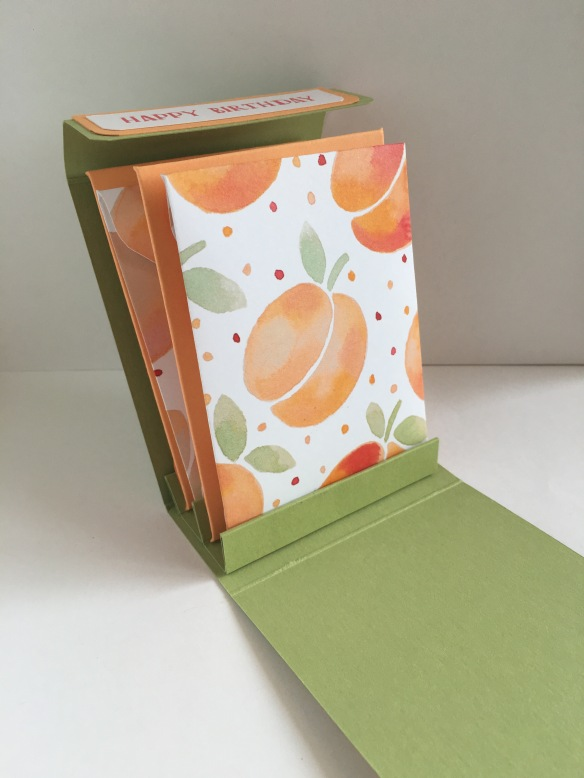 Maui Stamper CASE  Pootles Tea Bag Folder Holder Fresh Fruit