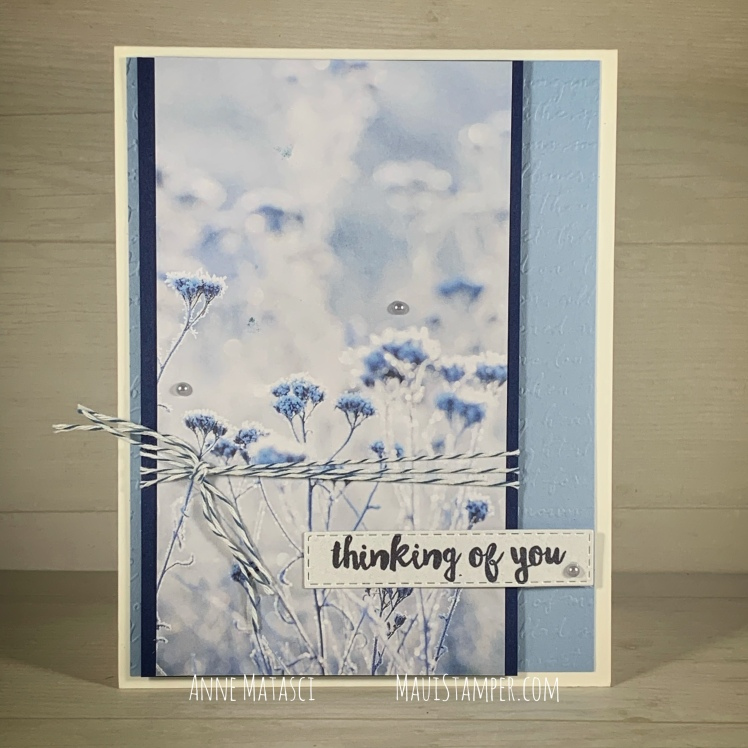 Maui Stamper Stampin Up Feels Like Frost Thinking of You