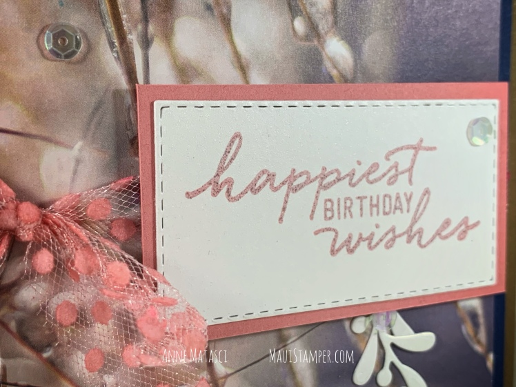 Maui Stamper Stampin Up Feels Like Frost Happiest Birthday Wishes