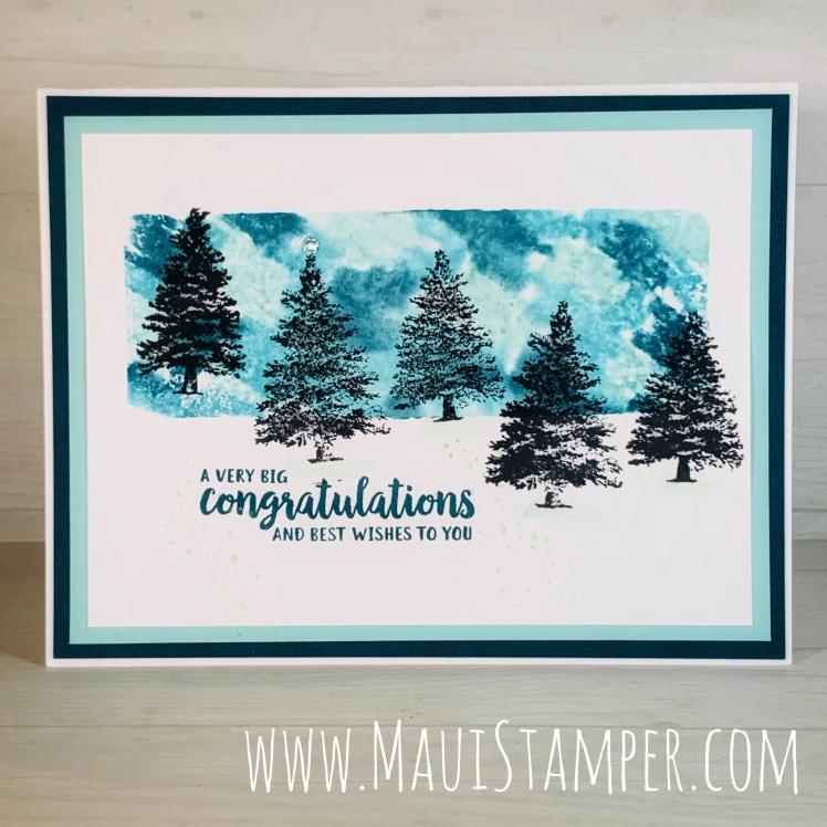 Maui Stamper Stampin Up Rooted in Nature Acrylic Block Technique