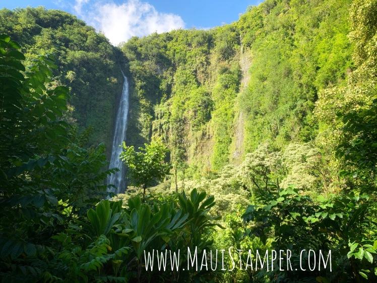 Maui Stamper Pīpīwai Trail Kīpahulu District Haleakalā National Park